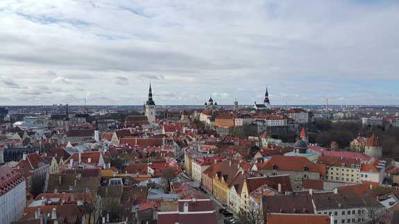 Vaizdas nuo Šv. Olavo katedros bokšto