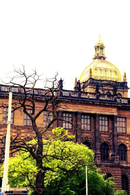 Nacionalinis muziejus