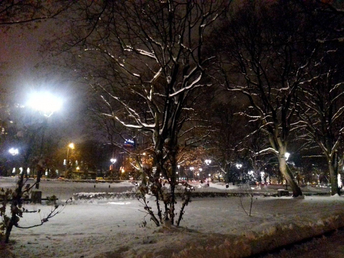 Fantastiški sniego sluoksniu pasidengę parkai – tarsi iš pasakos