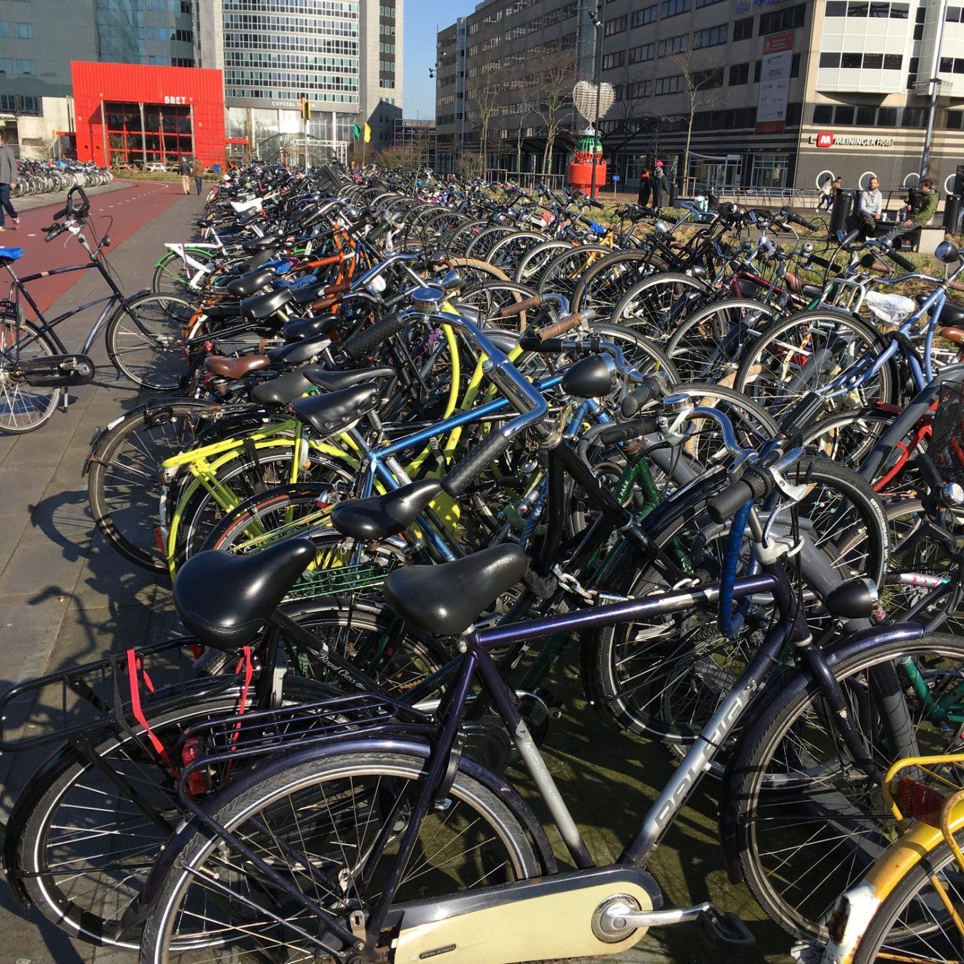 Amsterdamas - dviračių sostinė